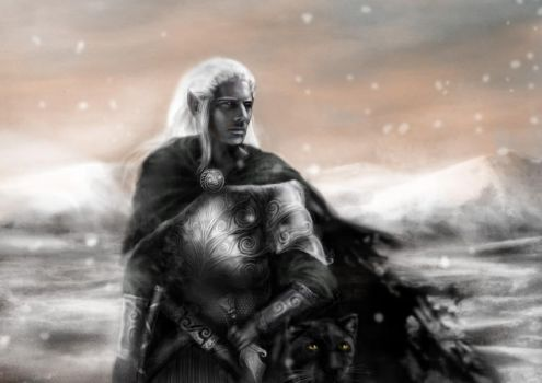 Drizzt. by 3001