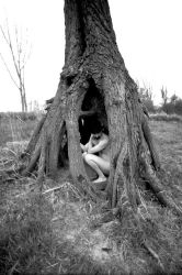 Under the rugged tree pt.2 by Gomeck