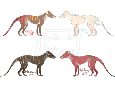 [3/4 OPEN] Thylacines Themed Adopts [OTA n DTA] by Perle-de-Suie
