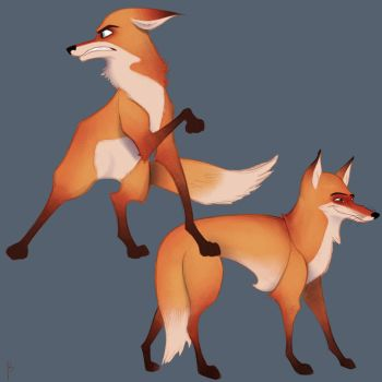 Foxes by Nick-Papa