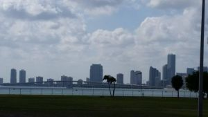 Miami Skyline by Slicenndice