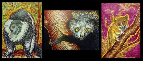Three Lemurs ACEOs by Redwall151