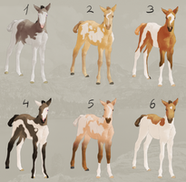 Lili'sican Foals Sale! (Pearl) [6/6 OPEN] by FeatherCandy