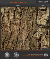 Tree Bark Pattern 1.0 by Sed-rah-Stock