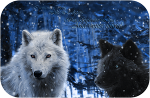 Winter Wolves by Xutes