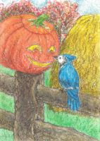 the Blue Jay's Friend ACEO ATC by metasilk