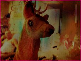 Not quite Rudolph by crisisnyc