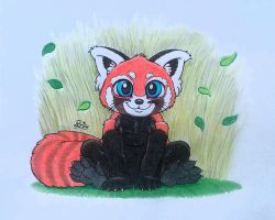 A Red Panda by PilloTheStar