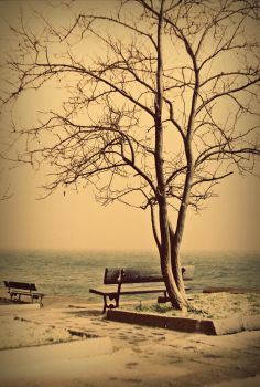 cold loneliness by childchewer