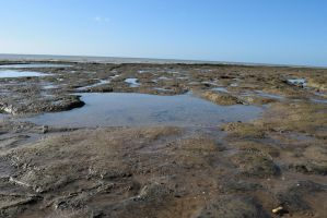 DSC 0096  Rock Pools 3 by wintersmagicstock