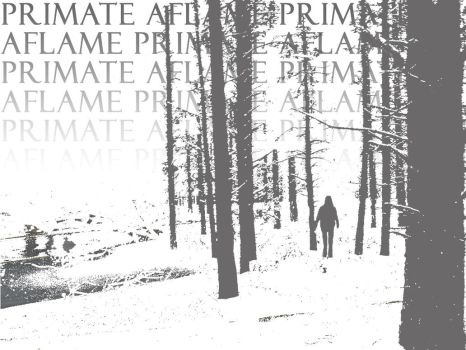 Grey Forest new by primate-aflame