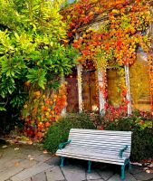 Autumn Bench by rlgarrard