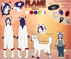 Reference Sheet Commission: Flame by Zelendur