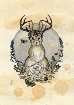 Jackalope by Kitty-Grimm