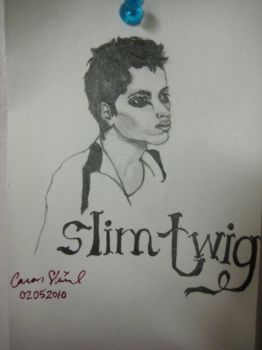 Slim Twig by not40