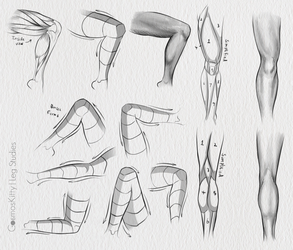 Leg Studies by CosmosKitty