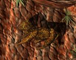 Leopard Pic 9 by GwillaTheDragon