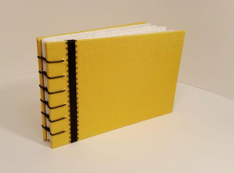 Yellow and Black Book by Pepper-Dragon