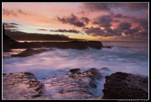 Cotton Candy by aFeinPhoto-com