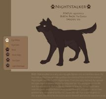 Nightstalker ref by DawnFrost