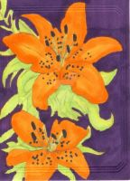 Tiger Lilies by kmccaigue