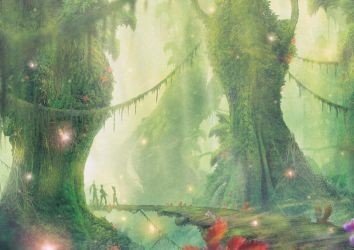 Entering Salikawoods by Orioto