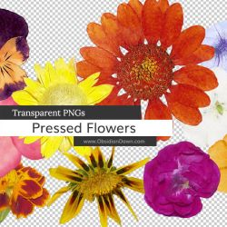 Pressed Flowers PNGs by redheadstock