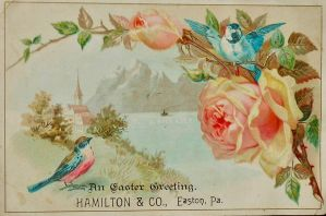 Victorian Advertising Card - Spring Birds + Blooms by Yesterdays-Paper