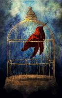:DREAMS: from BIRD-HOUSE by NathashahMMM