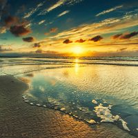 Shine by Oer-Wout