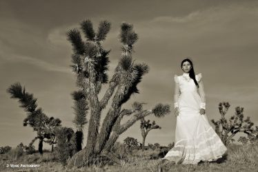 Desert Wedding by dwingephotography
