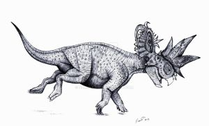 Pachyrhinosaurus charging by Paleo-King