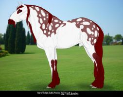 5177 Kil'Jaeden*SOLD* by HoT-Stables