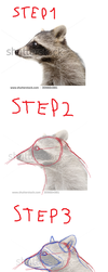Tutorial: Real Animal to Furry/Cartoon by FrostyWolfter