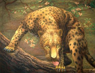 Leopard sees prey by CalciteMink1610