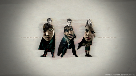 Harry - Ron - Hermione (Wallpaper 1290x1080) by Athias95