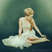 . . . sugar plum fairy . . . by phoenixgraphixstudio