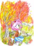 Amy Rose: Fall by Teejii
