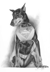 Super Dog by golfiscool