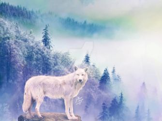 Valley of the wolfs by YttriumDesign