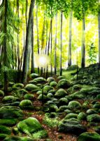 Sunny forest with stones by RKoneGNS