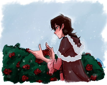 Roses by AmdVinci