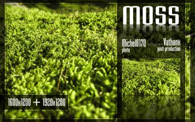 Moss by Vathanx