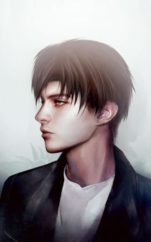 Levi Ackerman_side view by SiriCC