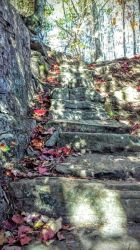 Going UP! by meljoy68