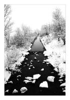 Snowy River Black and White by marble911