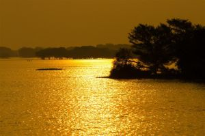 WaterScapes: Golden Waters 01 by letTheColorsRumble