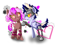 Commish: Softheart and the Doctor by Vivifx