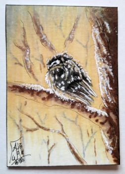 Boreal Owl - Out of Series (SOLD) by AndromedasWitchery