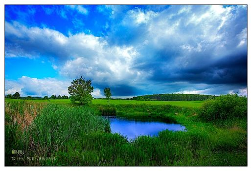 in the middle of the ... by werol
